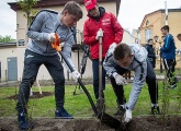 Andrei Arshavin and the Gazprom Academy players plant trees in St. Petersburg